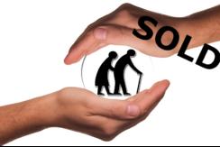 seniors sold